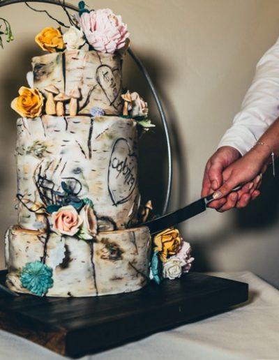 Cake cutting-17a